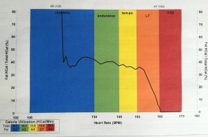 The relatively flat line across Zone 2 and Zone 3 is my fat burning