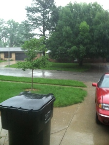 Our view of the neighborhood from the garage...