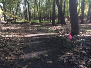 Virgin Trail in Cedar Fall, Iowa