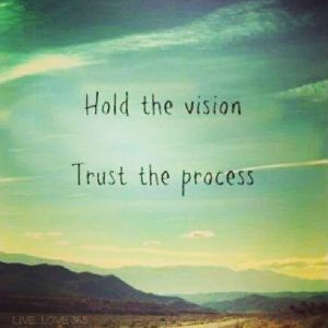 hold the vision trust the process