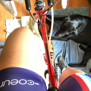 Basil wanted to coach me through my 3 hour endurance ride on Sunday...thanks to the rainy weather, it was done in our living room while watching NCIS season 11