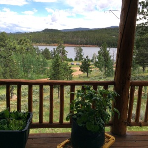 The view off of the deck overlooking the lake in Red Feather Lakes, CO.
