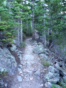 Just keep climbing the trail.