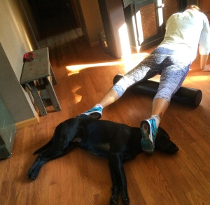 Basil likes to help me foam roller in my AMAZING Coeur Sports run capris :)