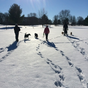 Romping and snowshoeing with friends